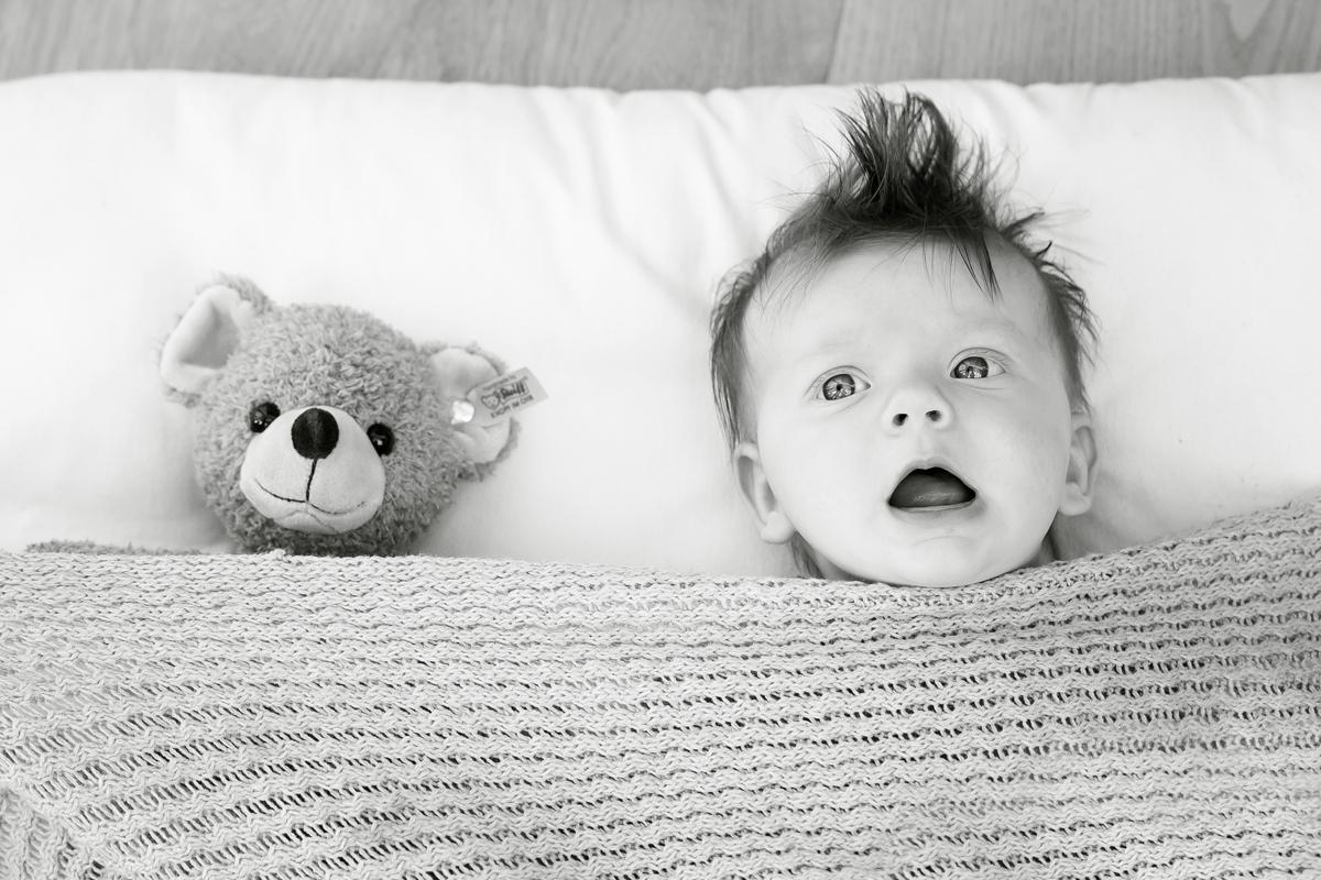 Baby_Bär-unter-Decke